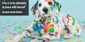 Puppy with paintbrush, covered in colored paint - Abraham Harold Maslow quotes about ultimately and peace - Writing Poetry Quotes