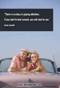 Anne Lamott Quotes – Ecstasy Paying – Inspirational Writing Quotes