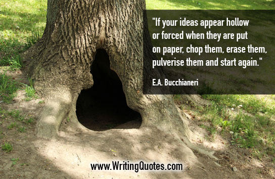 EA Bucchianeri Quotes – Ideas Hollow – Quotes About Writing