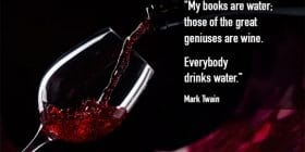 Pouring wine into a glass - Mark Twain quotes about geniuses and wine - Mark Twain Quotes On Writing